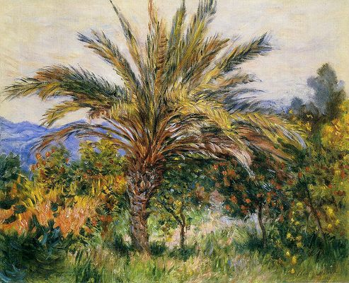Palmier à bordighera, par Claude Monet