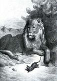 Le Lion et le Rat, Illustration de Gustave Doré des Fables de la Fontaine